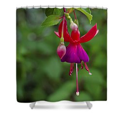 Fuschia Flower Shower Curtain