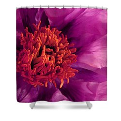 Fuschia Surprise Shower Curtain