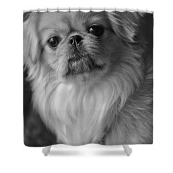 Fuzzface Shower Curtain