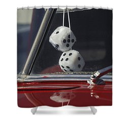 Fuzzy Dice 2 Shower Curtain by Jill Reger