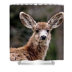Fuzzy Fawn Shower Curtain