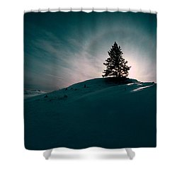 Fv4157, Will Datene Pine Tree On A Hill Shower Curtain by Will Datene