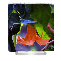 Gabriel Blow Your Horn Shower Curtain