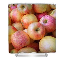Shower Curtain featuring the photograph Gala Apples by Joseph Skompski