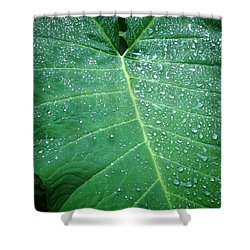 Galaxy Rain Shower Curtain