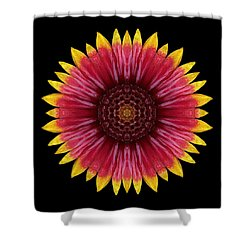 Galliardia Arizona Sun Flower Mandala Shower Curtain