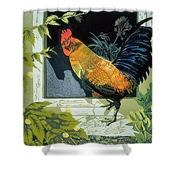 Gamecock And Hen Shower Curtain by Carol Walklin