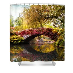 Shower Curtain featuring the photograph Gapstow Bridge  by Jessica Jenney