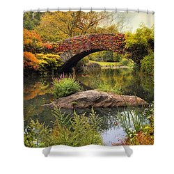Shower Curtain featuring the photograph Gapstow Bridge Serenity by Jessica Jenney