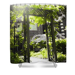 Garden Arbor In Sunlight Shower Curtain by Elena Elisseeva