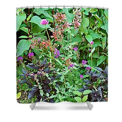 Garden Bouquet Shower Curtain by Aimee L Maher Photography and Art Visit ALMGallerydotcom