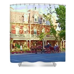 Garden City Shower Curtain by Barbara McDevitt