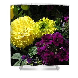Garden Contrast Shower Curtain