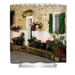 Garden Ledge Shower Curtain by Lainie Wrightson