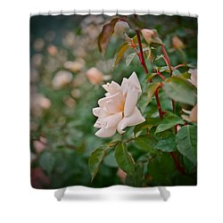 Garden Pride Shower Curtain by Linda Unger