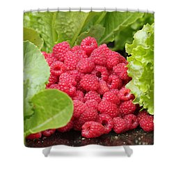Garden Scene Shower Curtain