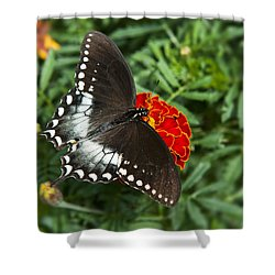 Garden Spice Butterfly Shower Curtain by Christina Rollo