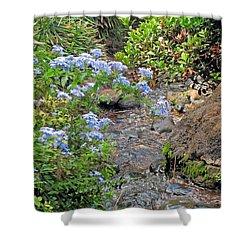 Garden Stream Shower Curtain