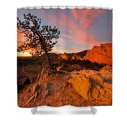 Shower Curtain featuring the photograph Garden Sunrise by Ronda Kimbrow