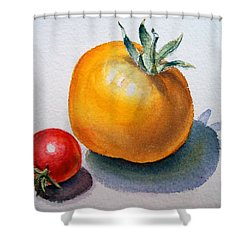 Garden Tomatoes Shower Curtain by Irina Sztukowski