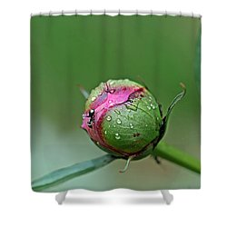 Shower Curtain featuring the photograph Garden Visitor by Alana Ranney