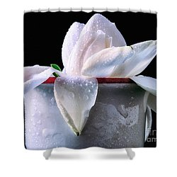 Shower Curtain featuring the photograph Gardenia In Coffee Cup by Silvia Ganora