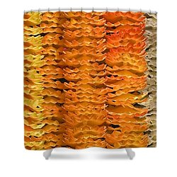 Shower Curtain featuring the photograph Garlands by Mini Arora