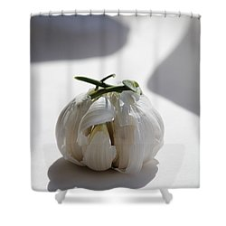 Garlic Clove Shower Curtain