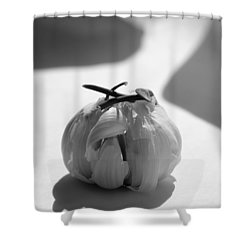 Garlic Cove B1 Shower Curtain