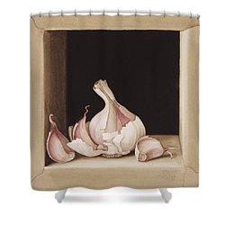 Garlic Shower Curtain by Jenny Barron