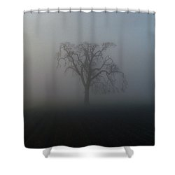 Shower Curtain featuring the photograph Garry Oak In Fog by Cheryl Hoyle