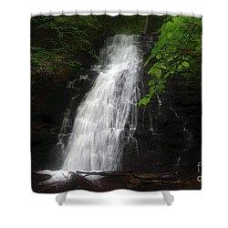 Shower Curtain featuring the photograph Garvey Spring Falls by Debra Fedchin