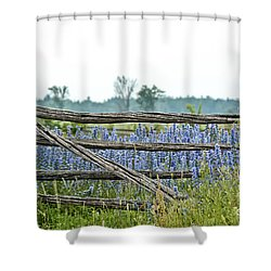 Gate To Blue Shower Curtain by Cheryl Baxter