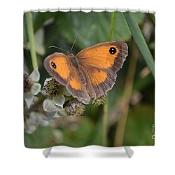 Gatekeeper Butteryfly Shower Curtain