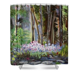 Gateway At The Balsams Shower Curtain by Michael Daniels