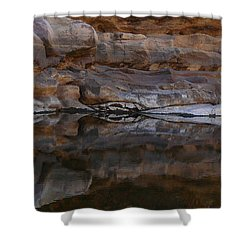Shower Curtain featuring the photograph Gateway by Evelyn Tambour