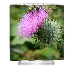 Gathering Pollen Shower Curtain by Chalet Roome-Rigdon
