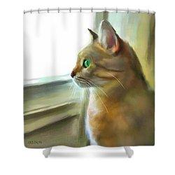 Gatofilia Shower Curtain