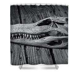 Gator Black And White Shower Curtain