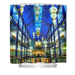 Gaviidae Common Architecture Shower Curtain