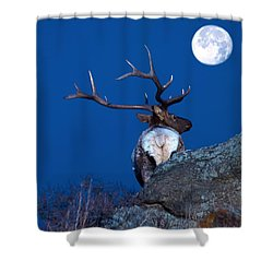 Gazing At The Moon Shower Curtain