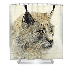 Shower Curtain featuring the painting Gazing Lynx by Phyllis Howard