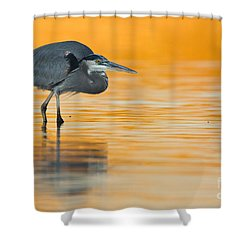 Shower Curtain featuring the photograph Gbh In Orange Water by Bryan Keil
