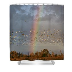 Geese And Rainbow Shower Curtain