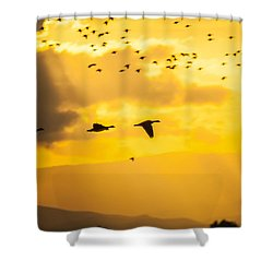 Geese At Sunset-2 Shower Curtain