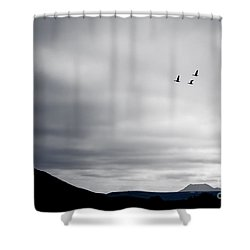 Shower Curtain featuring the photograph Geese Flying South For Winter by Peta Thames