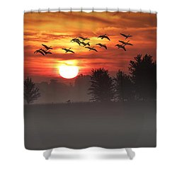 Geese On A Foggy Morning Sunrise Shower Curtain