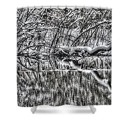 Geese On Pond Black And Wihite Shower Curtain by Dan Friend