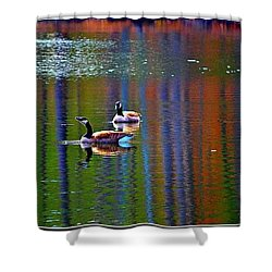 Shower Curtain featuring the photograph Geese On The Lake by Tara Potts