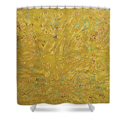 Gems And Sand Shower Curtain
